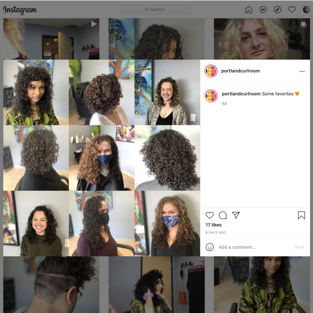 Screen grab of some @portlandcurlroom instagram favorites from curl-expert Chandler Elizabeth Adam (@transgenderagenda)